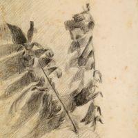 drawings_57.jpg