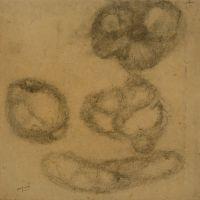 drawings_81.jpg