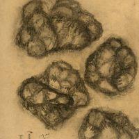drawings_87.jpg