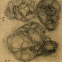 drawings_86.jpg