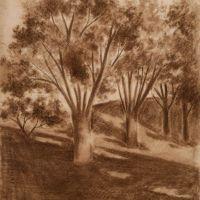 drawings_63.jpg